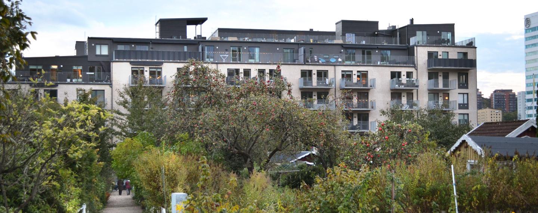 Almedals terrasser - Projektfakta